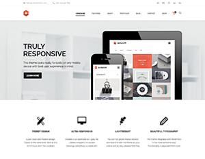 responsive web designer denver